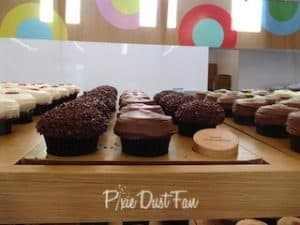 Sprinkles Chocolate Cupcake