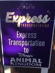 Animal Kingdom Express