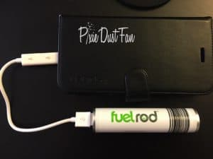 Fuel Rod Disney