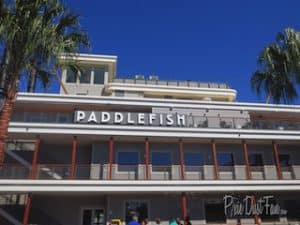 Disney Springs Paddlefish